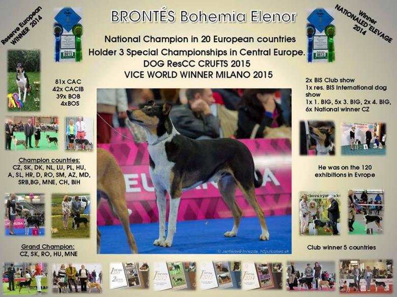 Brontés is my Champion