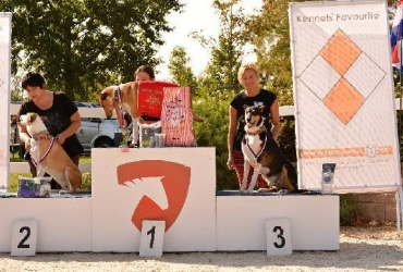 National Championship in coursing Ptýrov