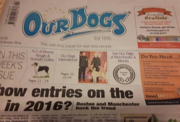 Our Brontés is in popular English newspaper Our Dogs