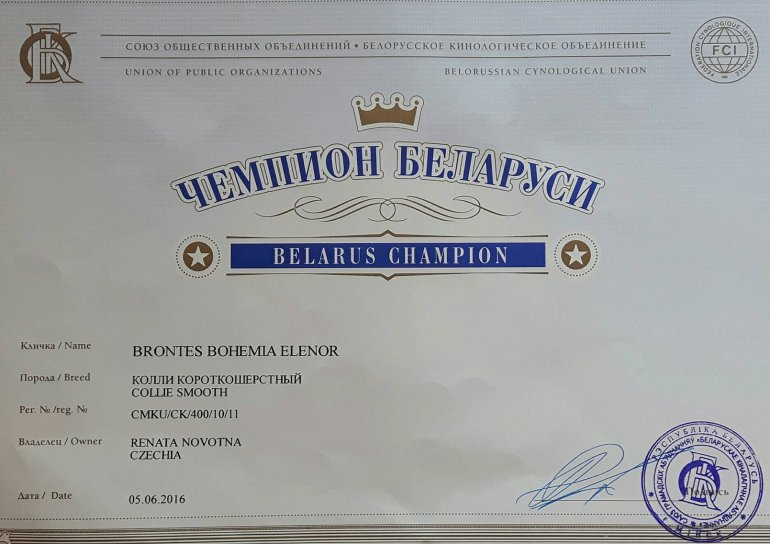 Champion of the Belorusia